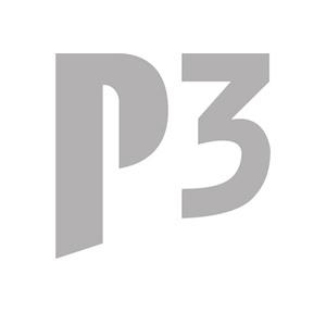 P3 automotive GmbH