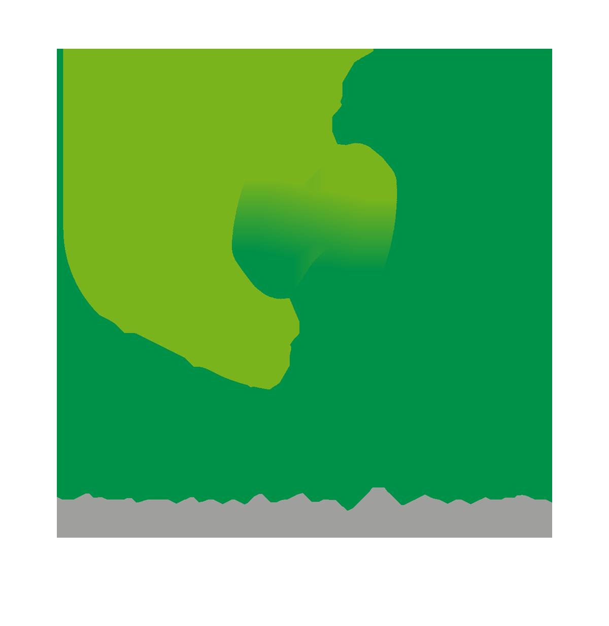 Rectifier Technologies